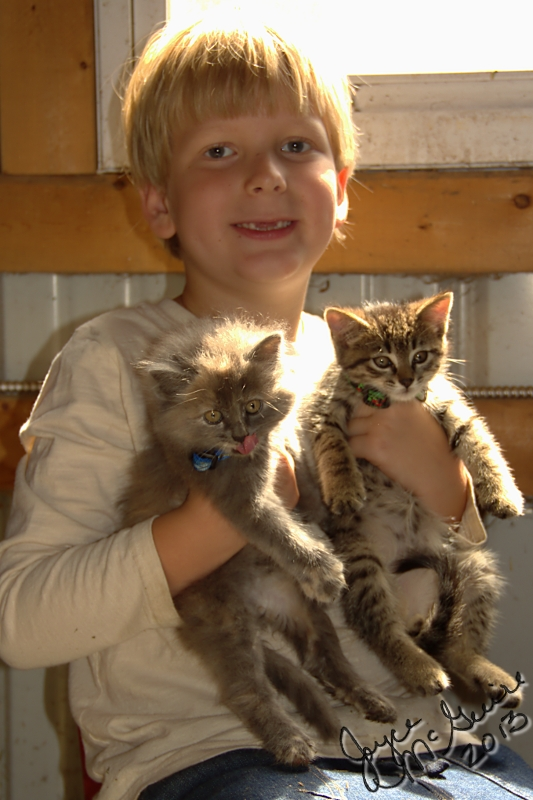Adrian and kittens