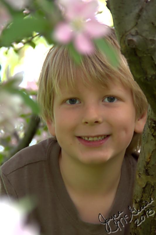 Adrian in tree