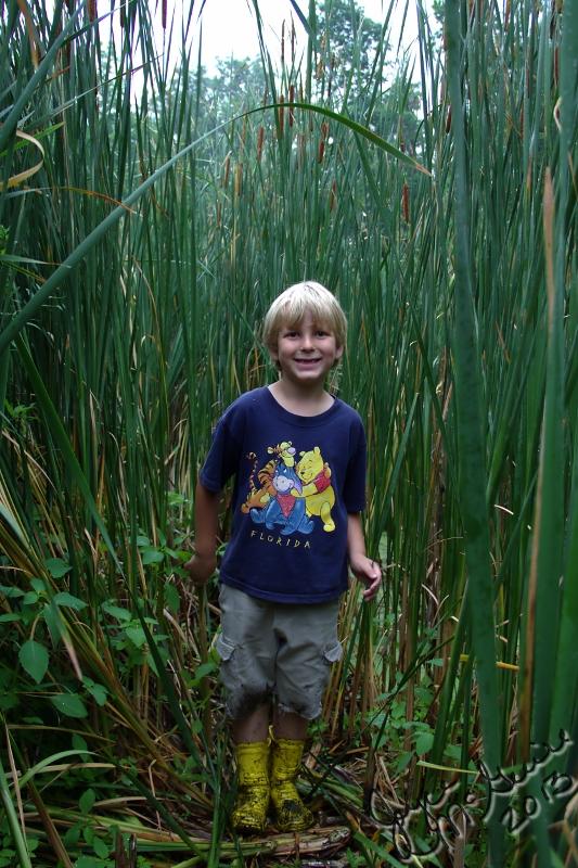 Swamp Tromp