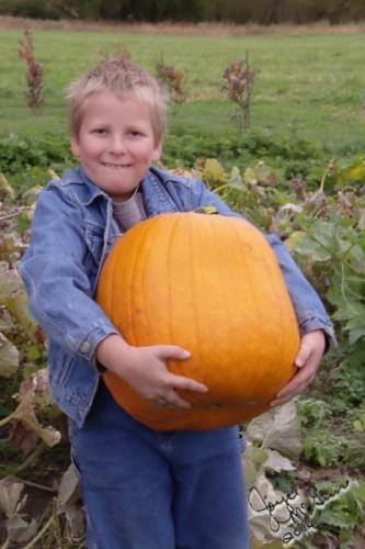 Adrian Pumpkin