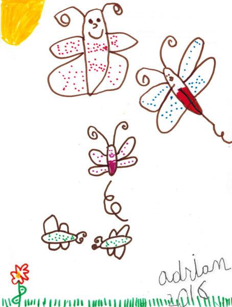 Butterflys.April2016